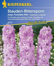 Rittersporn Magic Fountains Pink, Kiepenkerl Delphinium x cultorum