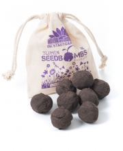 Seedbombs Schmetterlingswiese