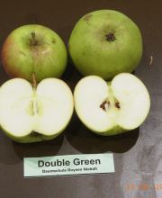 Double Green: Herbst/Winterapfel
