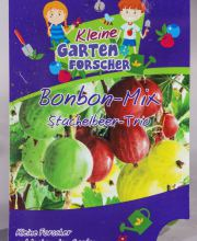 Stachelbeer-Trio Bonbon-Mix