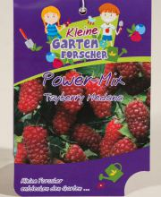 Tayberry Power Mix