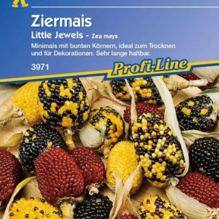 Ziermais Little Jewels / Kiepenkerl Zea mays